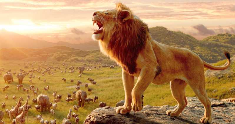 The Lion King Tamil Movie Download In Isaimini
